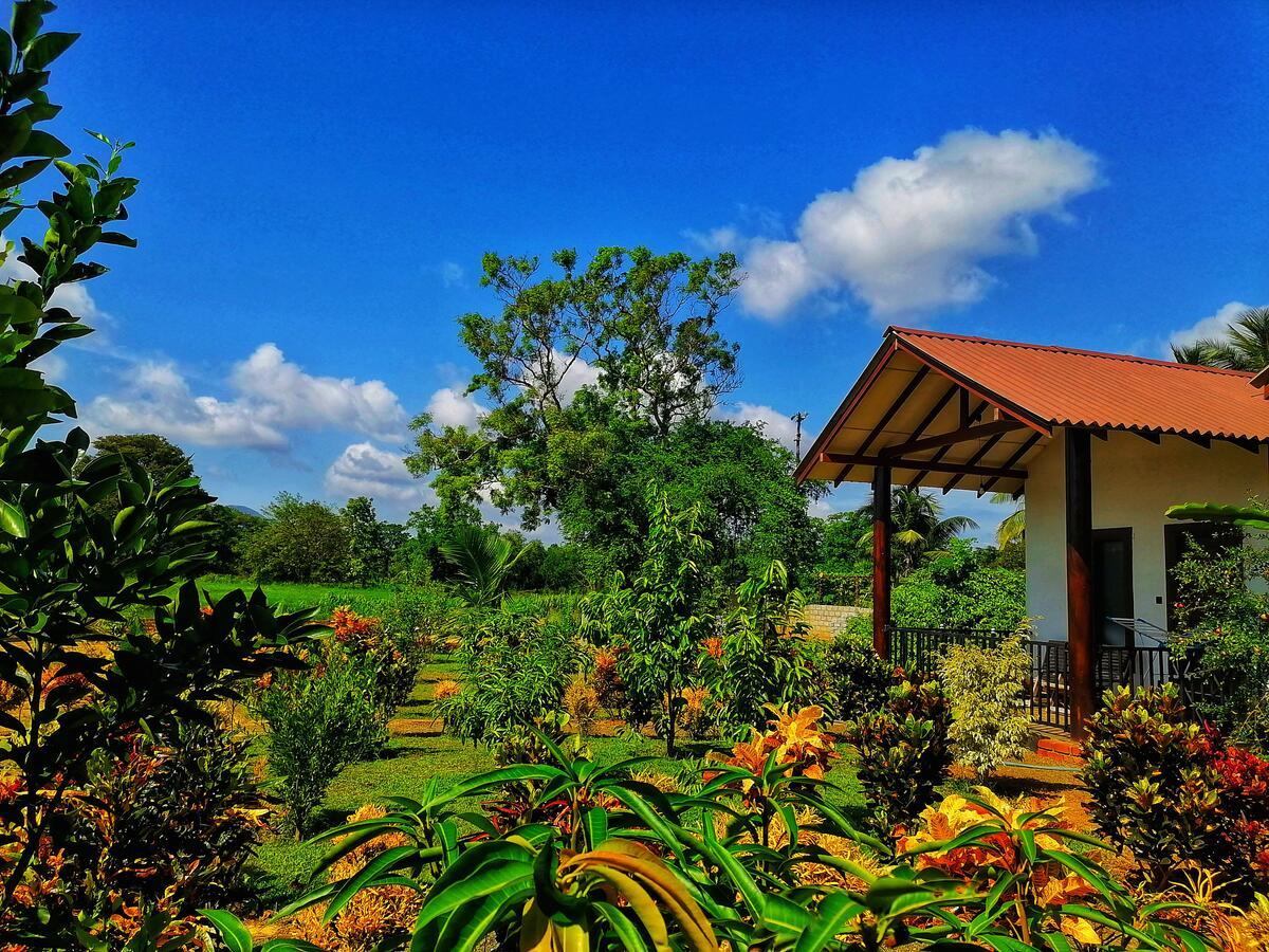 roys villa hostel sigiriya