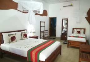 sigiriya-nature-park-villa-private-room