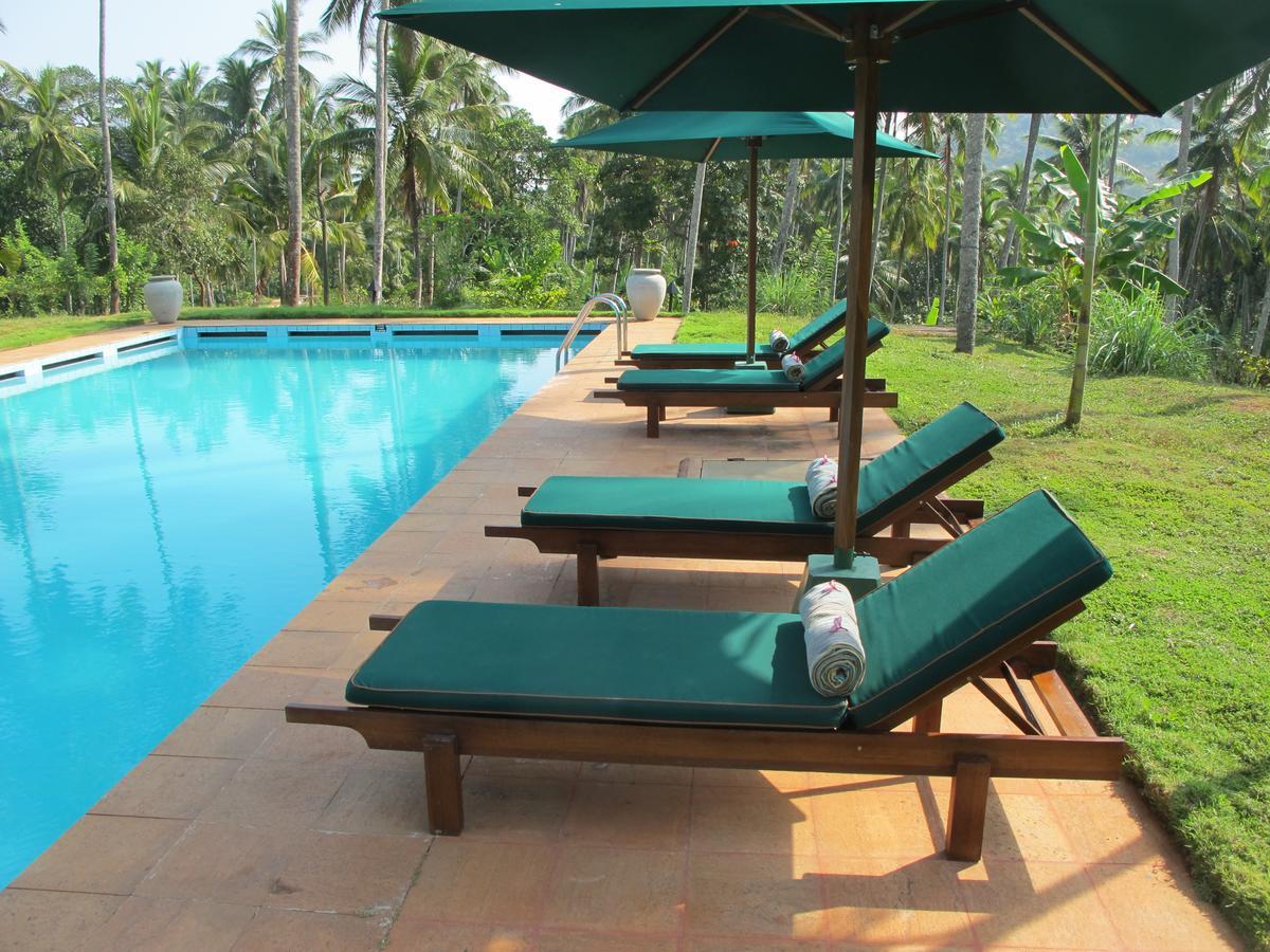eco hotel jims farm villa dambulla pool