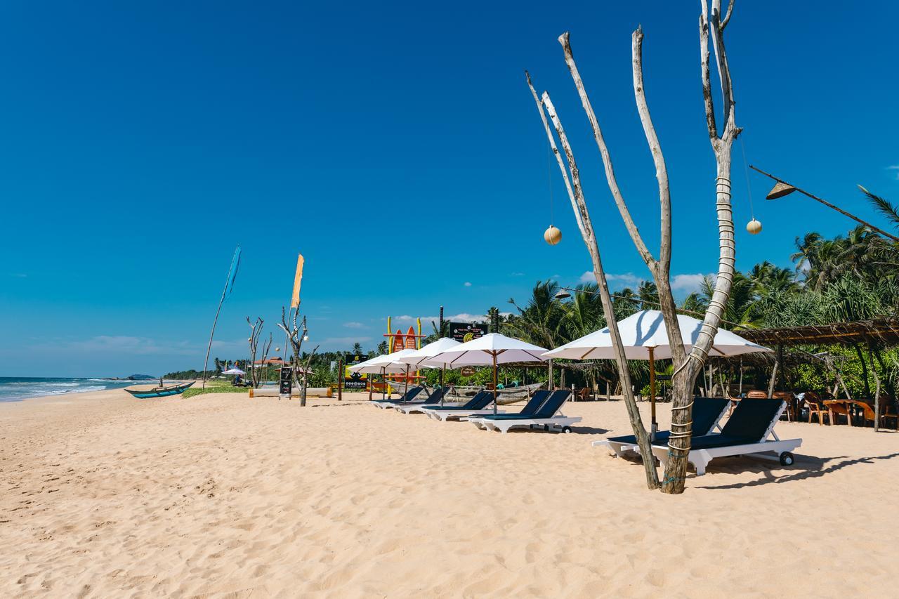 amal beach hotel bentota sri lanka